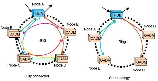 استاندارد، اجزا سیستم های DWDM